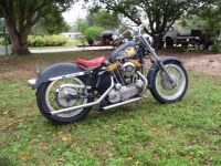 Russell's Ironhead (he